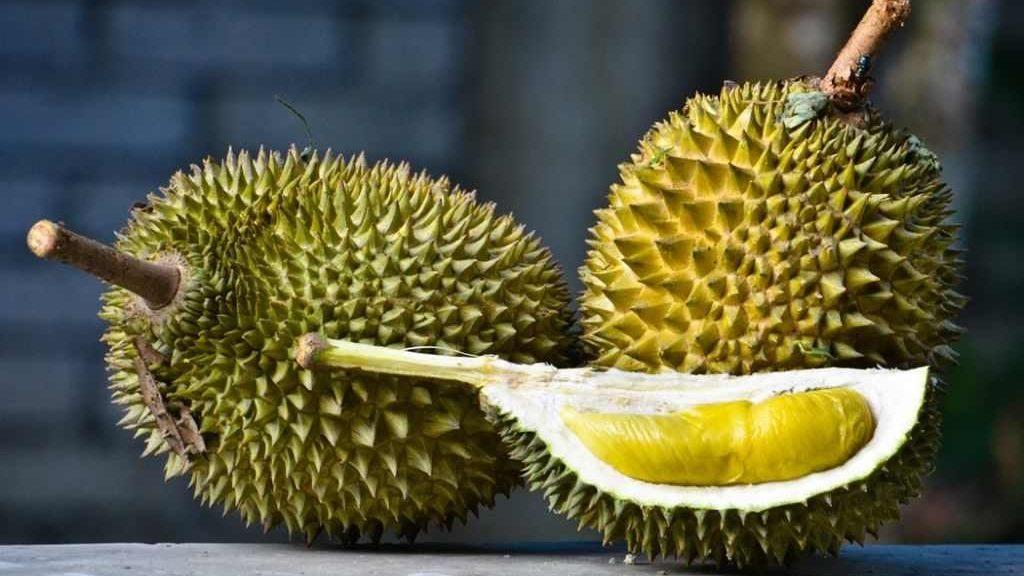 exotice-si-savuroase-cele-mai-rare-fructe-din-lume