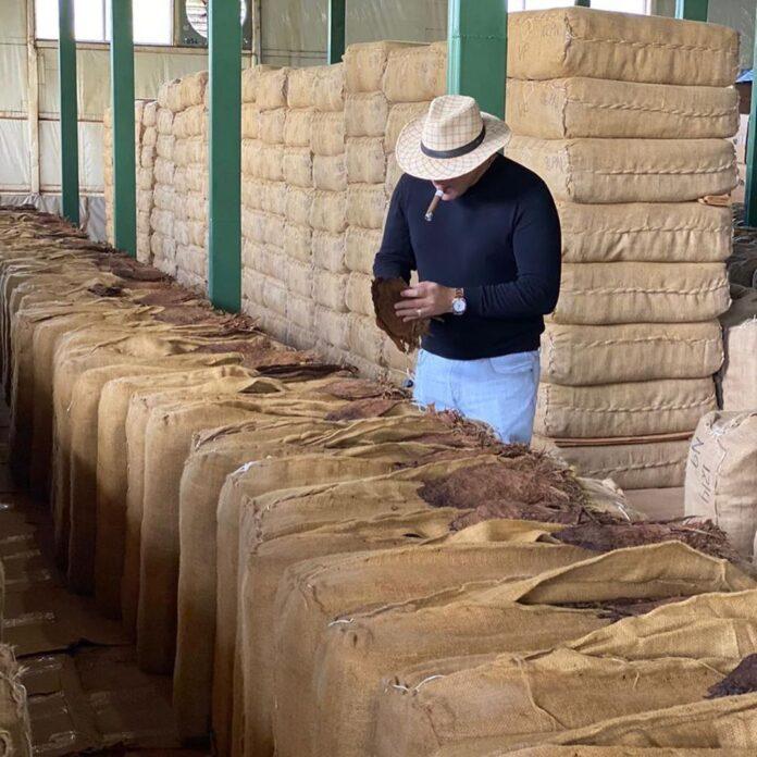 De ce toata lumea a inceput sa investeasca in trabucuri din Nicaragua